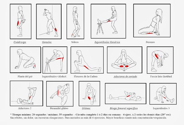 10 ejercicios de flexibilidad educación física