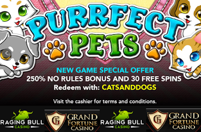 250% No Rules Match and 30 Free Spins Bonus