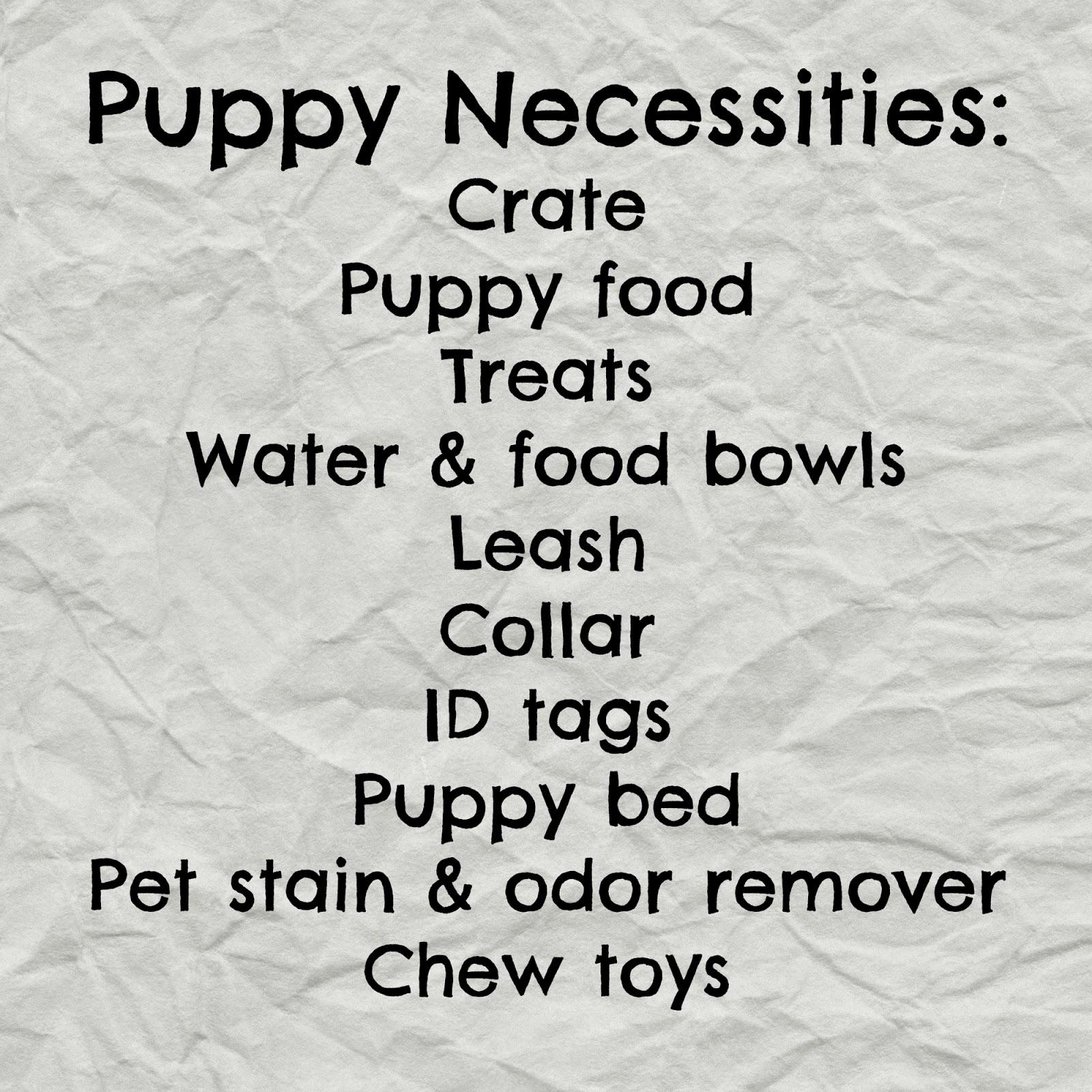 Puppy Shopping Checklist