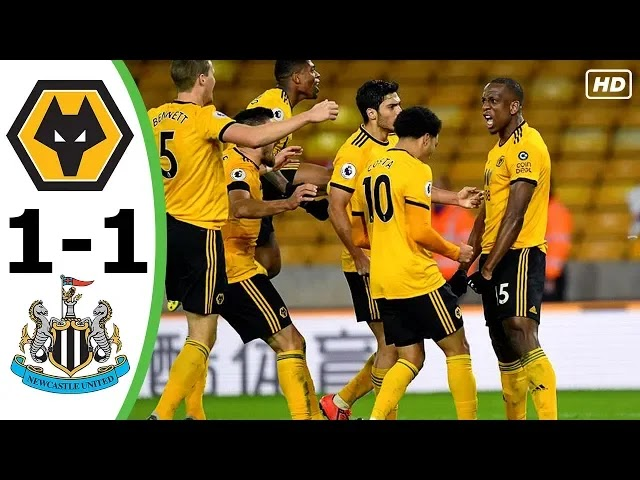 Wolves vs Newcastle 1-1 Football Highlights and Goals 2019