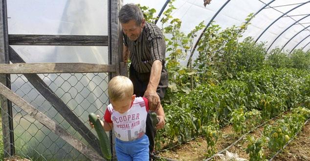 Милија Вулићевић (66) је срећан човек. Сваки дан уз њега су синови, снахе, унучићи. Њих шеснаесторо сада живи у једном дворишту у Видању, највећем повратничком месту општине Клина.