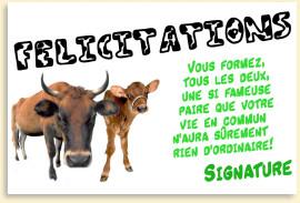 Felicitation De Mariage Humoristique Felicitation