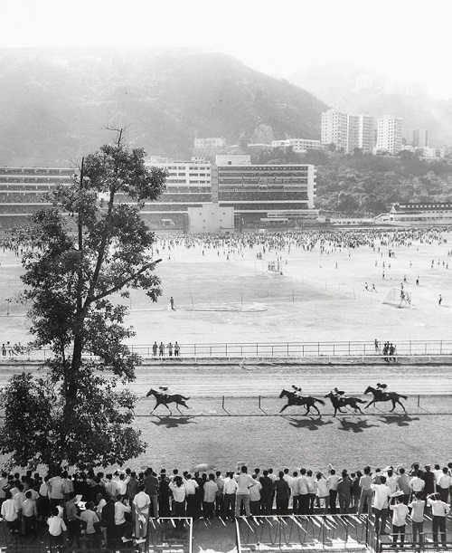 "Foto: Yau Leung - ""Racecourse (Happy Valley)"". // imagenes chidas, historicas, bellas, old hong kong, blanco y negro, cool pictures, vintage photos."
