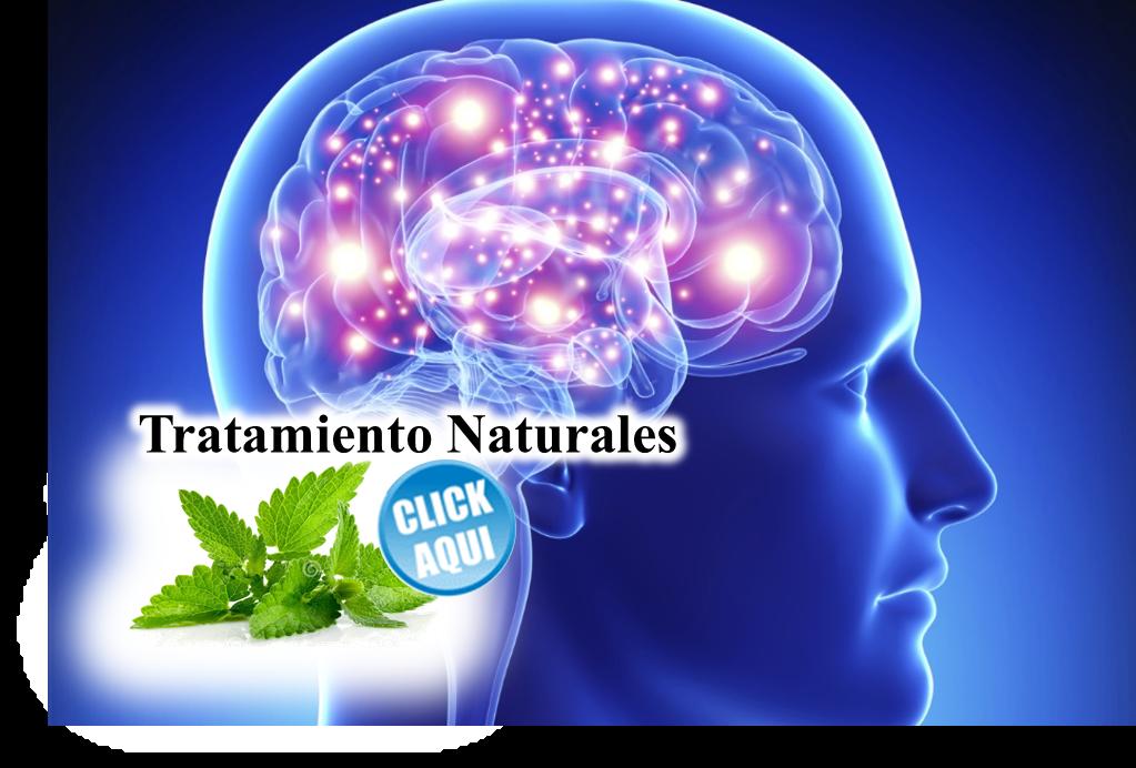 La infusión de esta planta es estimulante y un verdadero tónico ...