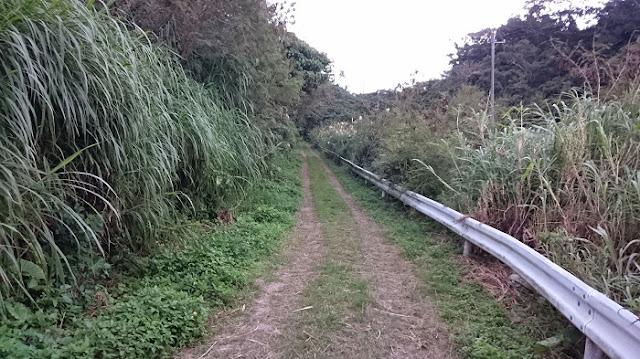 前川樋川へ続く道の写真