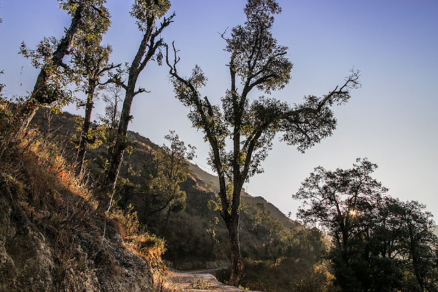happy valley hike mussoorie dalai lama