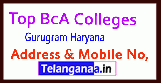 Top BCA Colleges in Gurugram Haryana