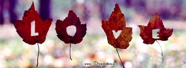 Facebook Leaves Love HD Wallpapers, Free Wallpaper Maple leaves Downloads, Love HD Desktop