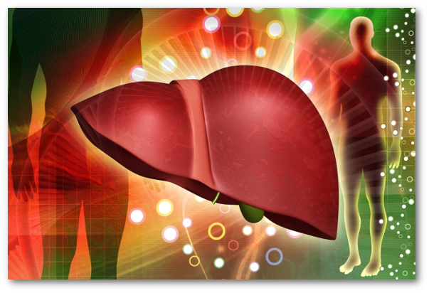Retete pentru suferinte hepato-biliare