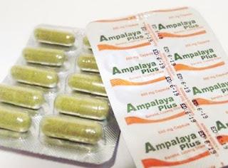 ampalayaplus