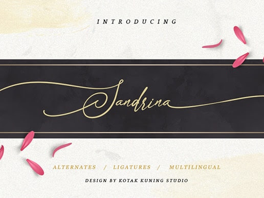 Sandrina Calligraphy Font Free Download