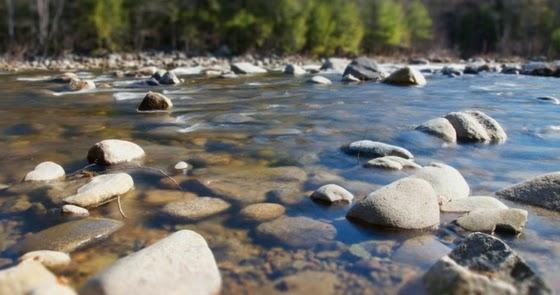 Teka-Teki: Ada sungai tak ada air, ada pokok tak ada buah