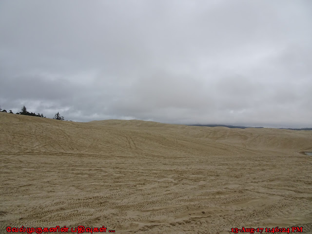 The Oregon Dunes National Recreation Area