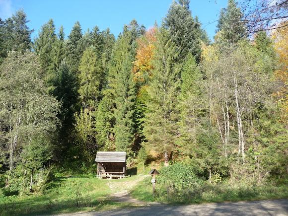 Национальный природный парк «Сколевские Бескиды». Львовская область