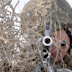 Боевики предприняли попытку штурма позиций ВСУ