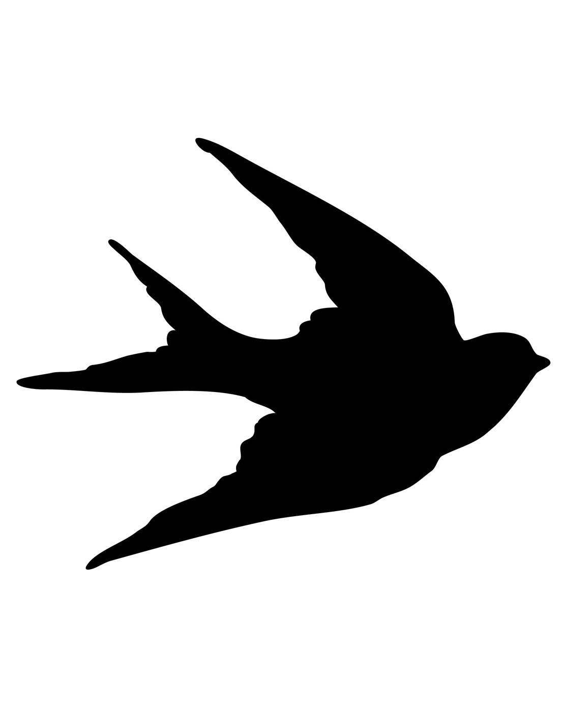 Drwaing of a bird | Sketch Inspiration | Pinterest