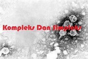 Contoh Kalimat Kompleks dan Simpleks Beserta Pengertian