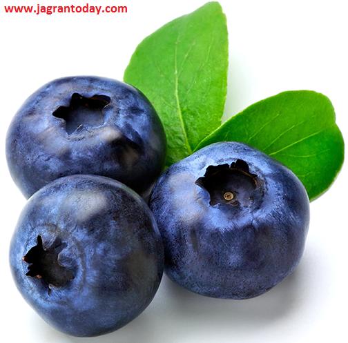 Upyogi Gunon se Bhari Blueberry