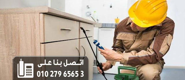 افضل شركة ابادة الحشرات المنزليه فى مصر