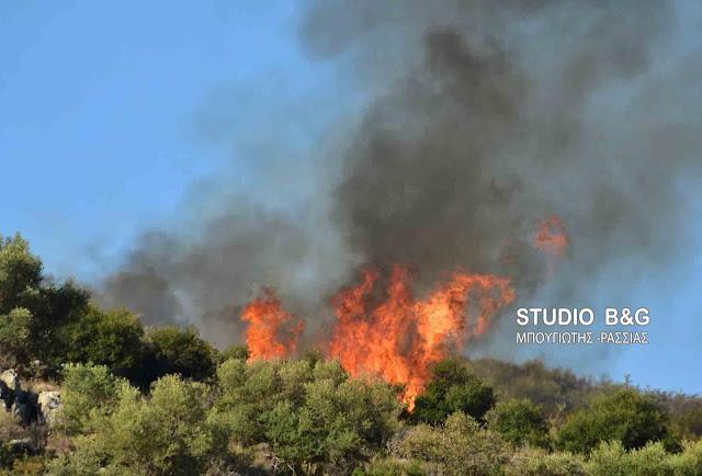 36 φωτιές το τελευταίο 24ωρο - Υψηλός ο κίνδυνος πυρκαγιάς για αρκετές περιοχές