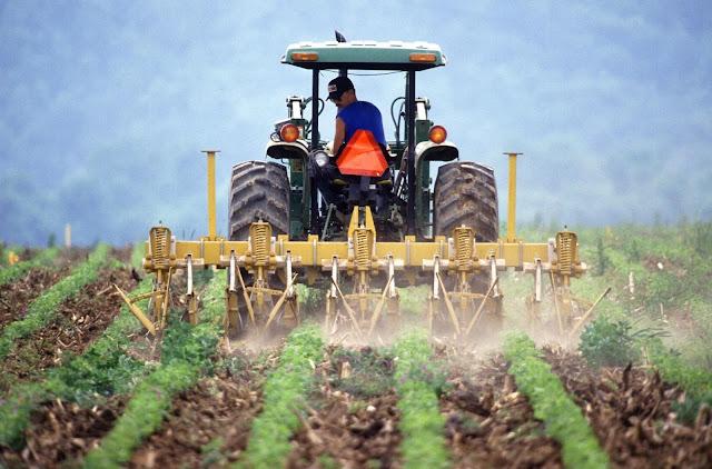 Οικονομική ενίσχυση σε νέους ως 40 ετών για ενασχόληση με τον αγροτικό τομέα