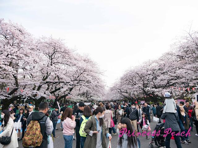 花多人更多的上野公園