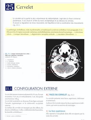 Télécharger Livre Gratuit Cervelet pdf