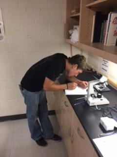 Chadron High School Blog: Advanced Biology Examines Plant Anatomy