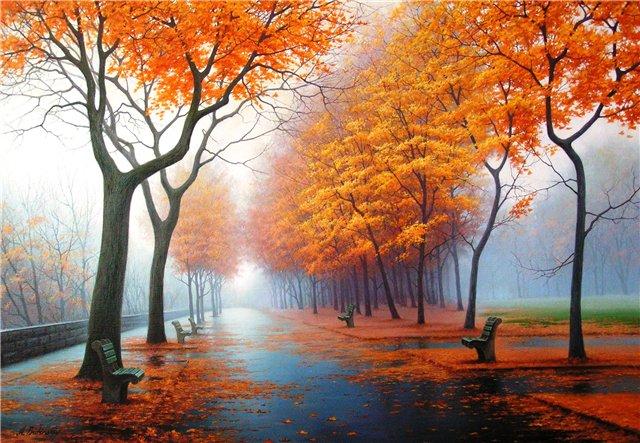 Конкурс ноября фото