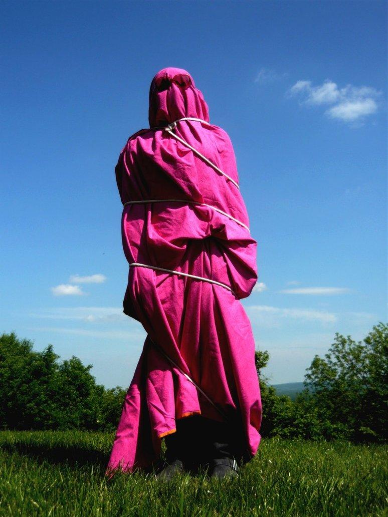 Vista Art Projects Christo Wraps The Ordinary World