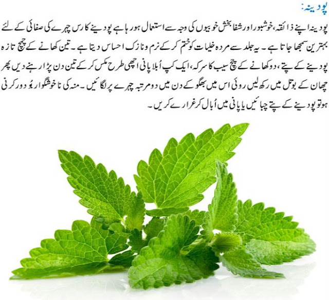 4 Amazing Herbs and Their Benefits in Urdu – Jari Booti ...