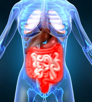Gastroenteritis remedios evitarla iflora