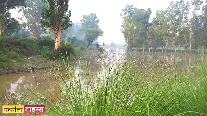 ganga_khadar_flood_tigri