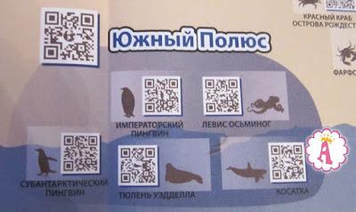 Развивающая игра Венно и карта с животными Южного Полюса