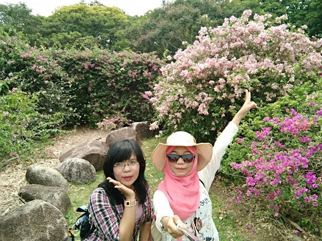 taman bunga singapore