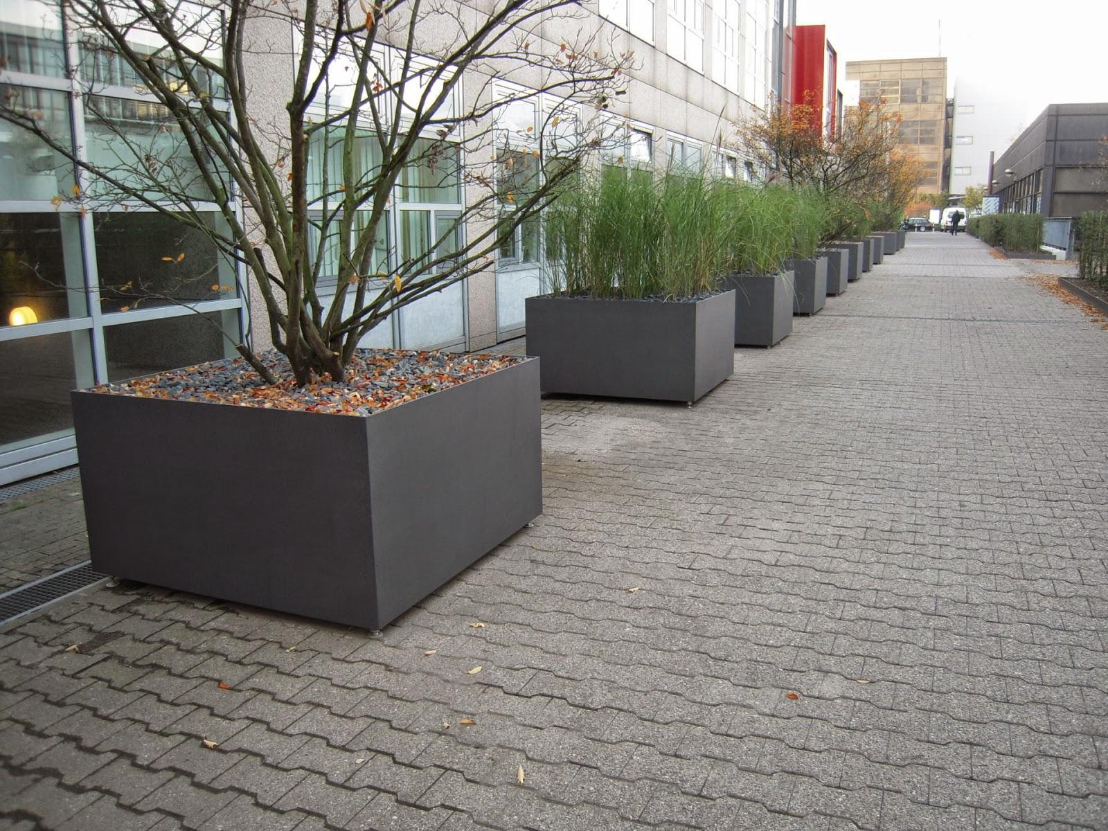 pflanzkübel für bäume | was ist im herbst zu tun tipps und tricks