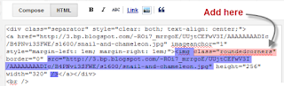 Dasar-dasar CSS. Cara Menerapkan Gambar Terlihat Nyata  # 2