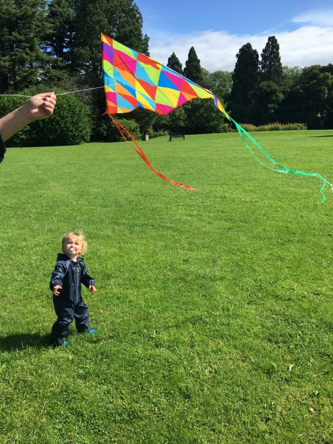 Lets-Go-Fly-A-Kite!-toddler-looking-at-kite-flying
