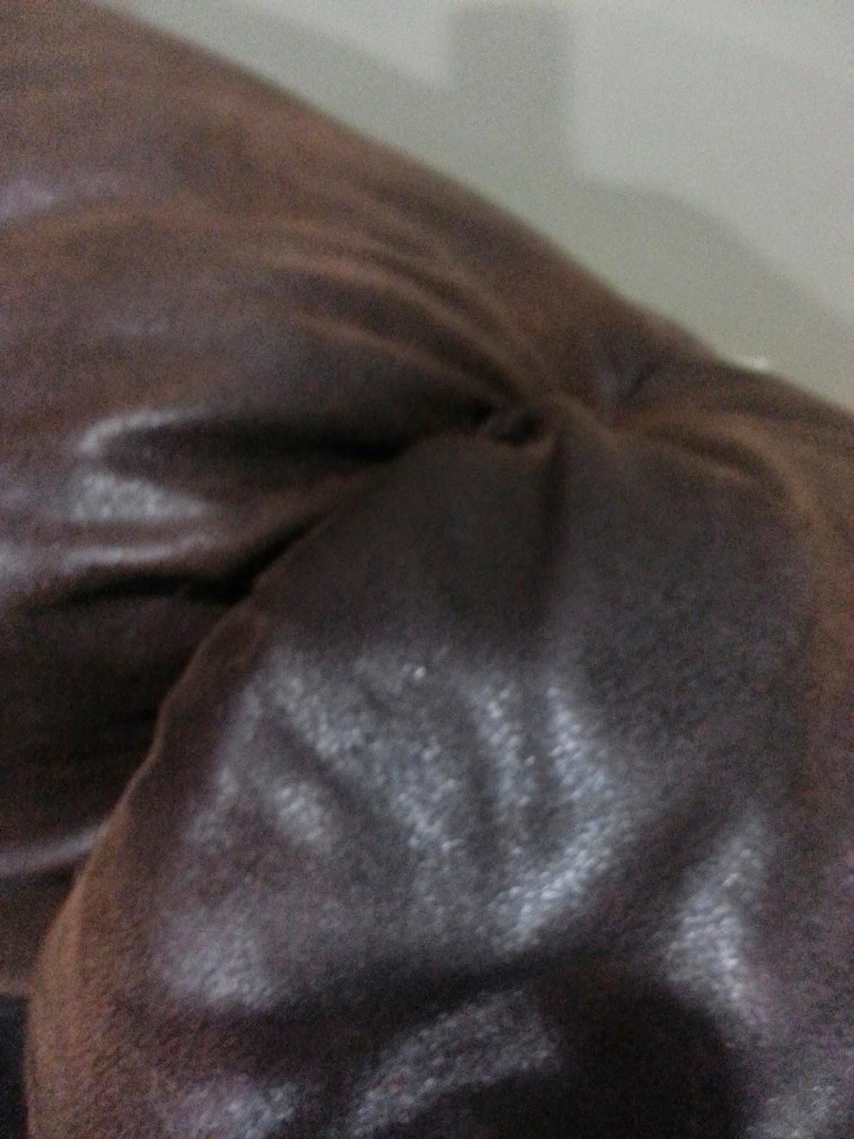 dried cat vomit furniture