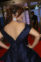 Payal Ghosh aka Harika in Dark Blue Deep Neck Sleeveless Gown at 64th Jio Filmfare Awards South 2017 ~  Exclusive 054.JPG
