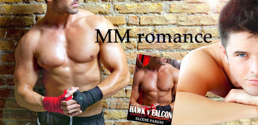 Hawk v Falcon: Surprise at the Candy Apple by Elodie Parkes #MMRomance