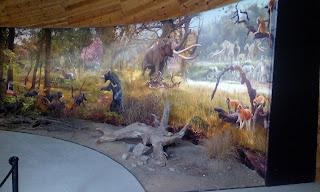 Plicenski park muzei Dorkovo (paleolitno nahodishte)