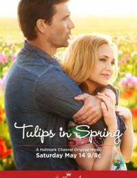 tulips in spring | Bmovies