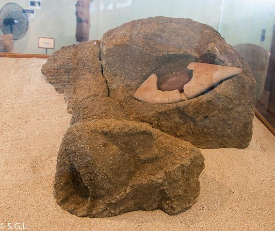 Detalle ojo moai museo antropologico Isla de Pascua