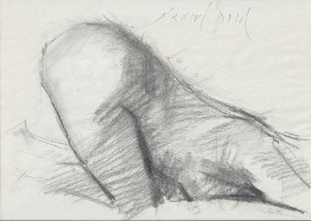Zemanova naked on wooden floor