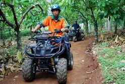 Wisata Kampoeng Kopi Banaran Jawa Tengah yang Lengkap Tempat Wisata Terbaik Yang Ada Di Indonesia: Wisata Kampoeng Kopi Banaran Jawa Tengah yang Lengkap