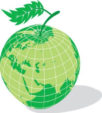 كركي يصدر قرارا يقضي بإعطاء القطاع الاستشفائي سلفة ماليّة عن شهر تشرين الثاني 2020