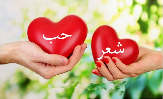 syair bahasa arab tentang cinta