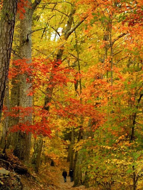 Indian Trail en Watkins Glen
