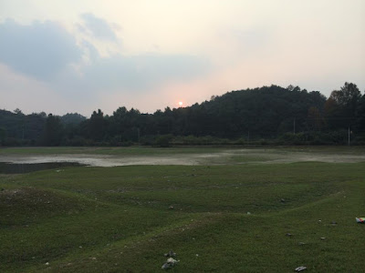 A photograph of a verdant, green landscape taken somewhere in Jingdezhen, China
